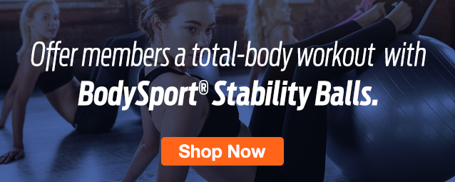 Half Page Ad –  Shop BodySport Stability Balls at ELIVATE – Click to View Page