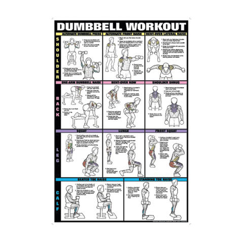 Dumbbell workout chart ii shoulders back leg calf exercises