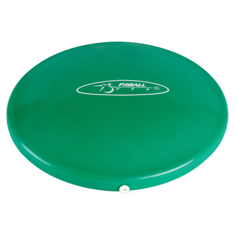 FitBALL Balance Disc at ELIVATE™