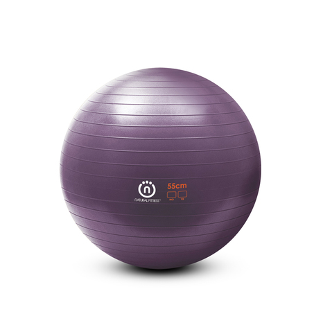 Natural Fitness Burst-Resistant Exercise Ball at ELIVATE™