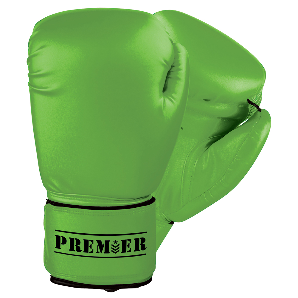 Revgear Premier Boxing Gloves