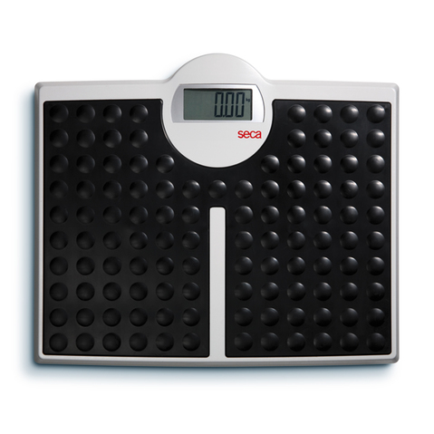 Seca 813 High Capacity Digital Floor Scale & More at ELIVATE™