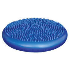 Balance Disc from ELIVATE Fitness - Click to Shop