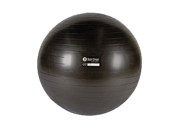 Stability Balls Accessories Elivate